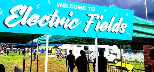 Electric fields 2017